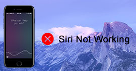 Siri Not Working