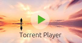 Najlepszy odtwarzacz torrentów