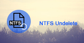 NTFS Undelete Guide and Review Tools Recovery
