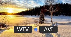 WTV in AVI