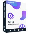 Scatola convertitore video MP4