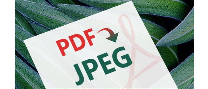PDF a JPEG