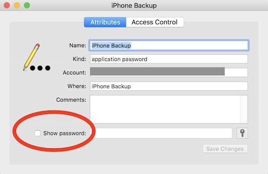 Βρείτε τον εφεδρικό κωδικό πρόσβασης iTunes