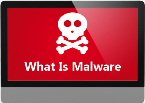What Is Malware
