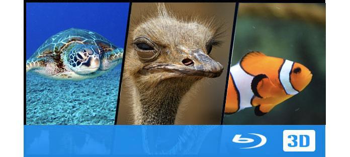 Καλύτερες ταινίες 3D Blu-ray