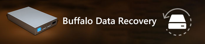 Ανάκτηση δεδομένων buffalo
