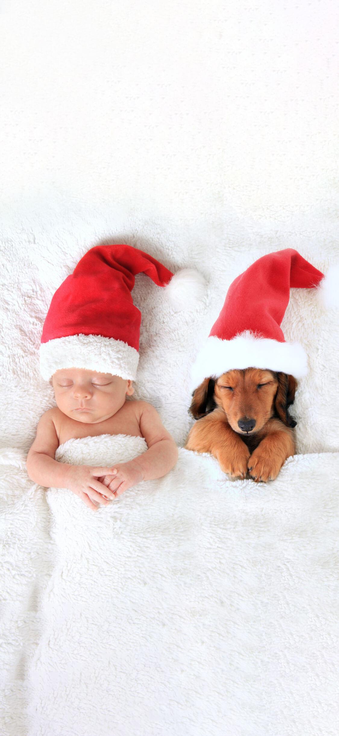 7 white baby and dog