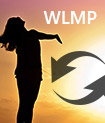 Convert WLMP to WMV, MP4, AVI, MOV, FLV, MP3, etc.