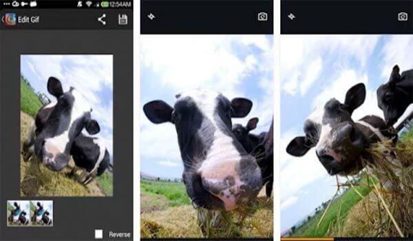 Fotocamera GIF