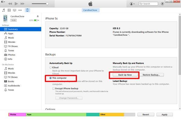 Salva messaggi di testo su iTunes
