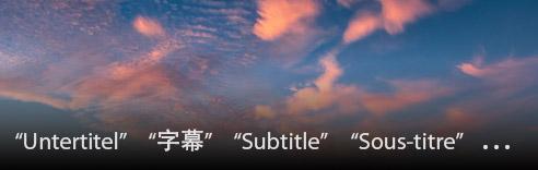 Subtitles in Different Language