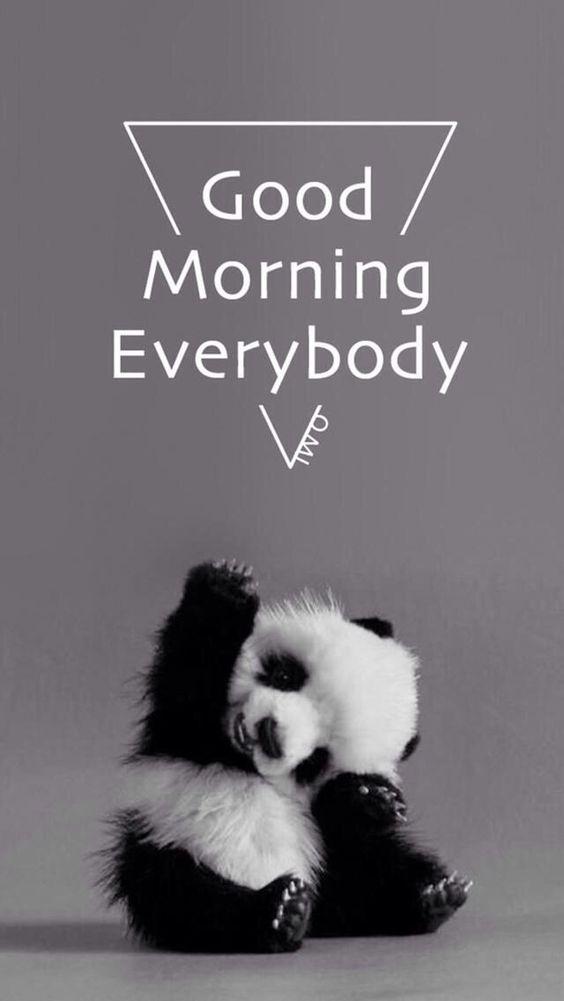 Καλημέρα Panda