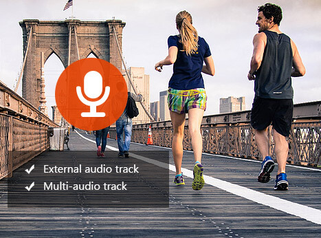 Multi-Audio Track