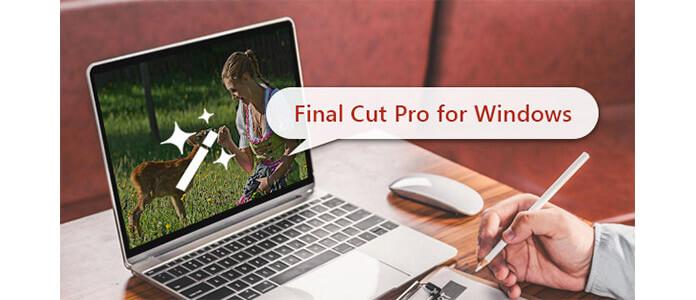 Finestre di Final Cut Pro