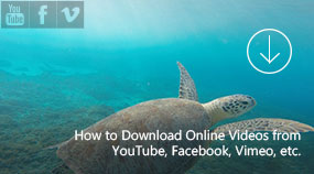 Download Online Videos