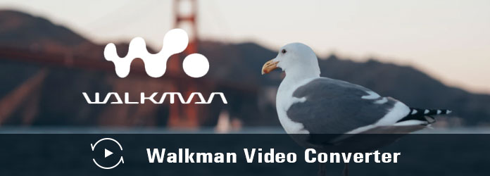 Μετατροπέας βίντεο Walkman